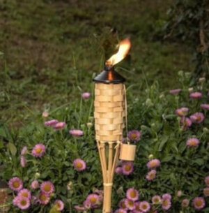 Bamboo Torch Main