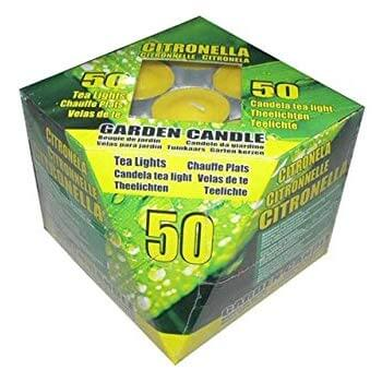 Citronella Tea Lights Pk 50