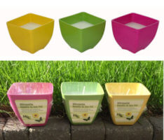 Eco Pots Filled with Citronella Wax Large