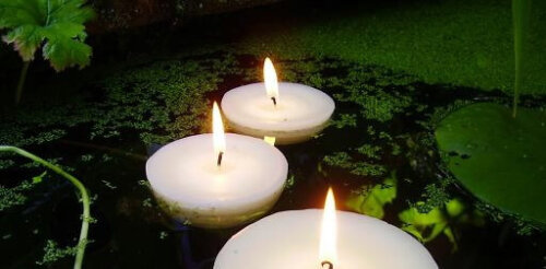 Pond and Swimming Pool Floating Candles