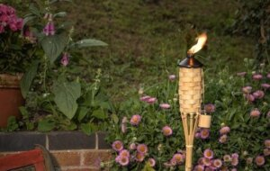 Outdoor Candles, Bamboo Torches, Lanterns, Citronella Candles