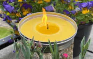 Citronella Garden Candle in a Tin