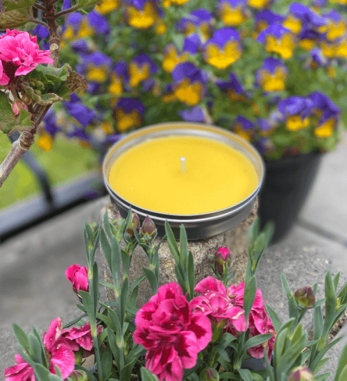Garden Citronella Candle in a Tin Unlit