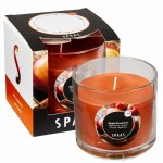 Scented Gift Candle Boxed Apple Cinnamon